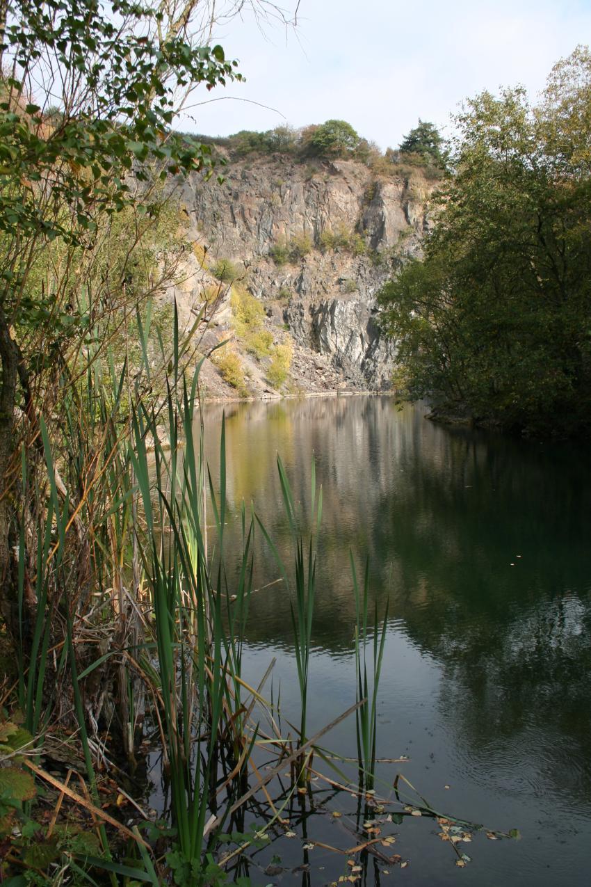 Herbst am und im Silbersee, Silbersee,bei Trier,Rheinland Pfalz,Deutschland