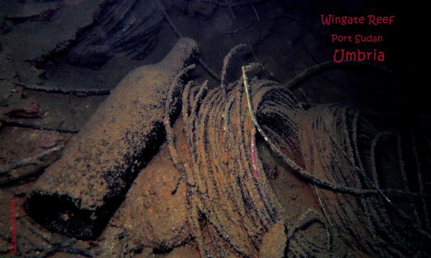 Ladung Umbria: Kabelrollen, Umbria, Wrack, Sudan, Port Sudan, Seawolf Diving, Safari Dominator, Hans Hass, Umbria - Wingate Reef, Sudan