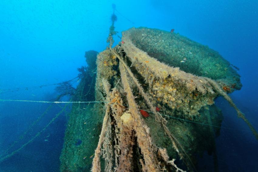 Wrack der Domiat (HMS Nith, K255), Wrack Domiat, HMS Nith, K255, Wrack der Domiat (HMS Nith - K255), Ägypten