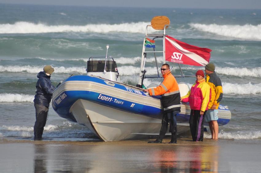 Sardine Run, Impressionen Rainer Schimpf, Sardine Run,Eastern Cape Südafrika,Südafrika