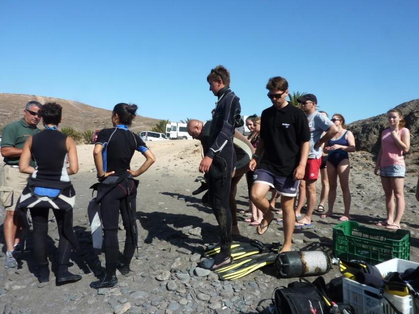 Diving Intros - Fuerteventura, tauchen auf Fuerteventura, tauchbasis fuerteventura, tauchbasis costa calma, Delphinus Diving School Fuerteventura, Spanien, Kanarische Inseln