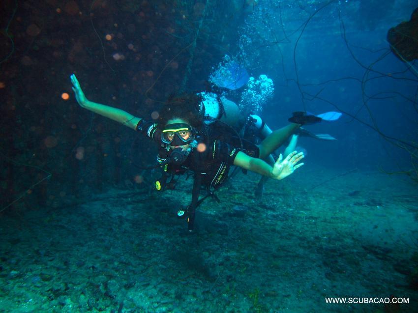 Tauchen auf Superior Producer, tauchen, diving, duiken curacao, Scubacao Diving Adventures, Niederländische Antillen, Curaçao
