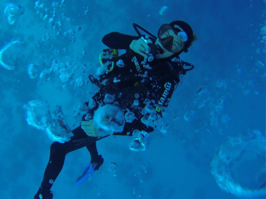 Deutsche Tauchschule Hurghada , Deutsche Tauchschule Hurghada, Diving Forever Hurghada, Ägypten, Hurghada