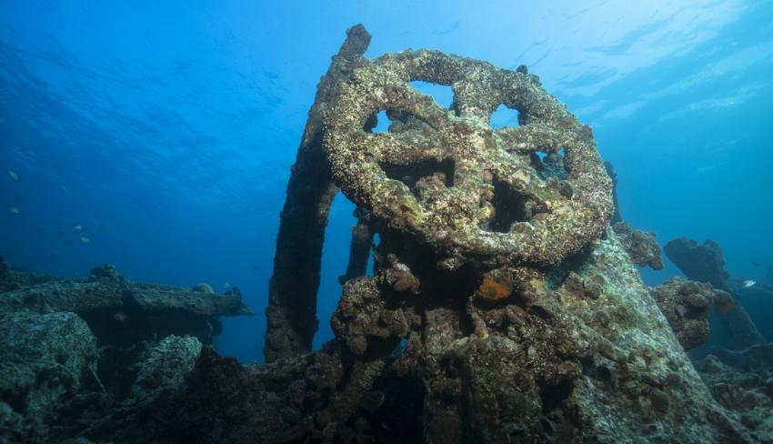 Scalaria - Wrack, Wrack der SS Scalaria,Ägypten