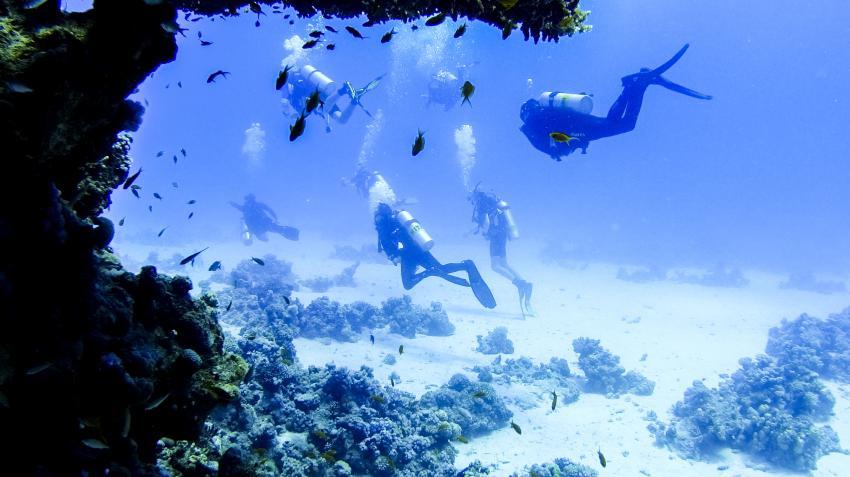 Scuba_World_Divers_Makadi_Bay_3, Tauchen in Makadi Bay, Scuba World Divers Makadi Bay, Ägypten, Hurghada