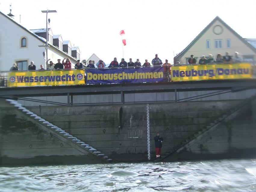 Donauschwimmen in Neuburg/Donau, Donau,Neuburg,Bayern,Deutschland