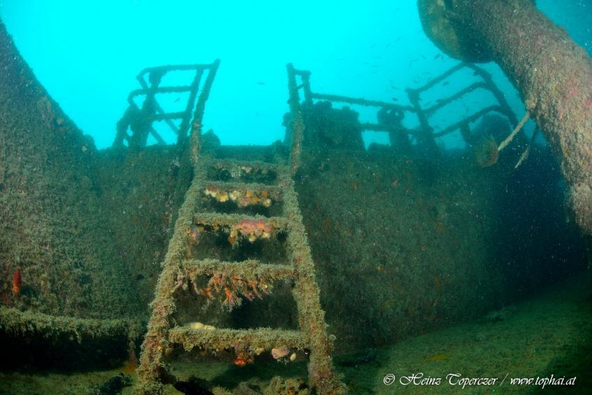 Wrack, Mittelmeer, Adria, Hang-Loose-Diving, Punat, Insel Krk, Kroatien
