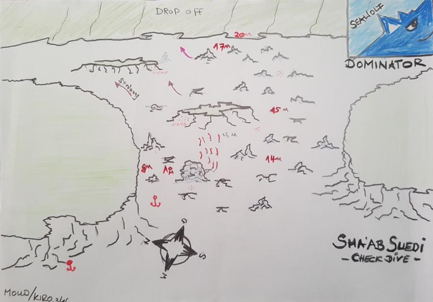 Riffkarte Sha'ab Suedi, Sudan Seawolf Diving Safari Riffkarte Suedi Suadi Checkdive Dominator, Sha'ab Suedi Ostseite, Sudan