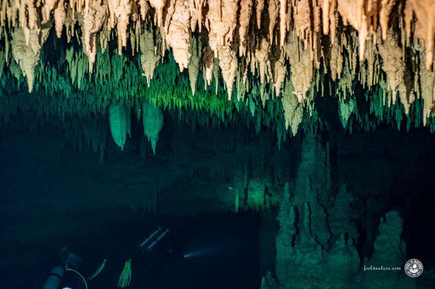 Wunderbare Tropfsteinformationen, Cenote Adventures, Mexiko