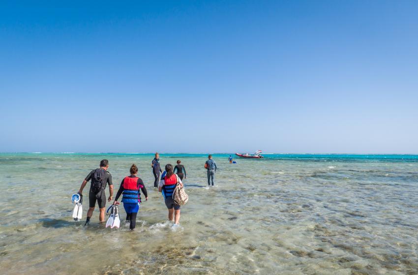 SWD22, Scuba World Divers Marsa Alam, Lagoon View Resort, Ägypten, El Quseir bis Port Ghalib