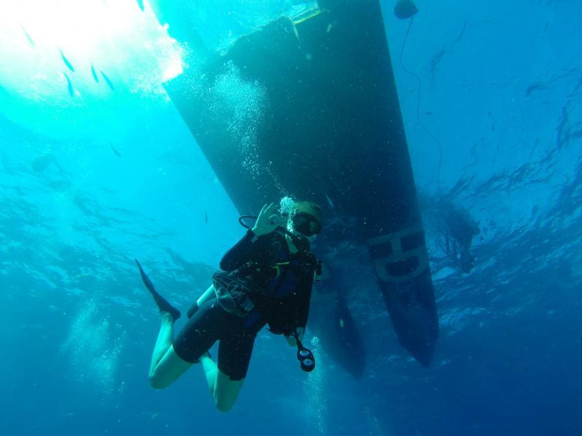 Auf dem Weg , Tauchen Florida Keys, Sons of Poseidon, Key Largo, USA, Florida