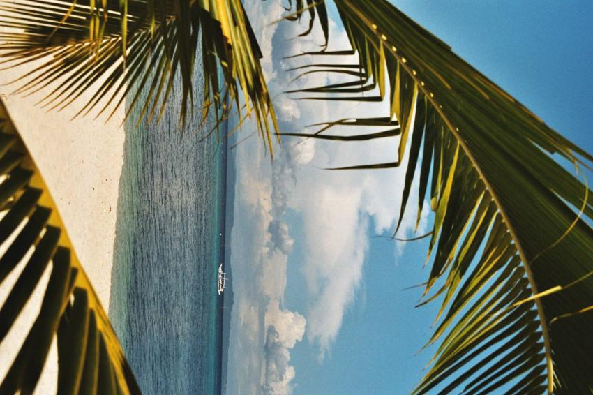 Malapascua nördl. von Bohol, Malapascua,Philippinen,strand,palmen,himmel