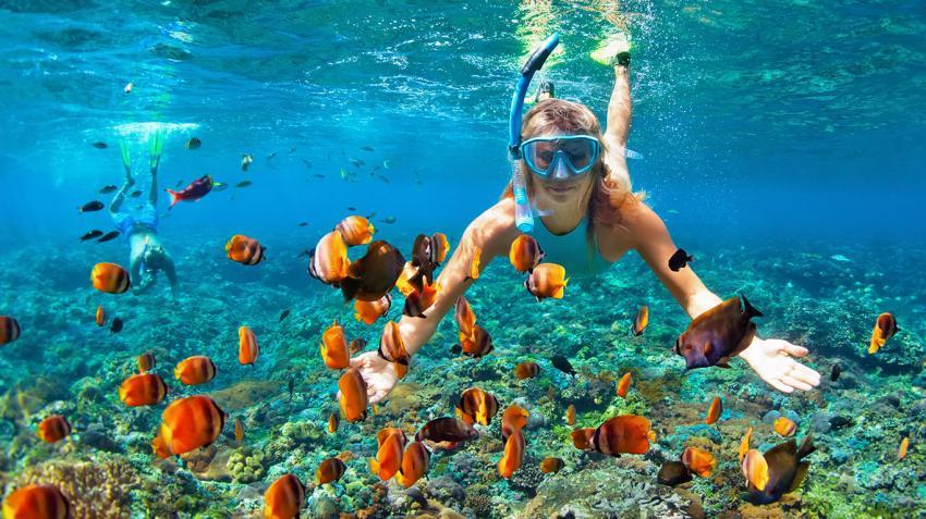 Schnorcheln, Riff, Euro-Divers Kandooma, Malediven