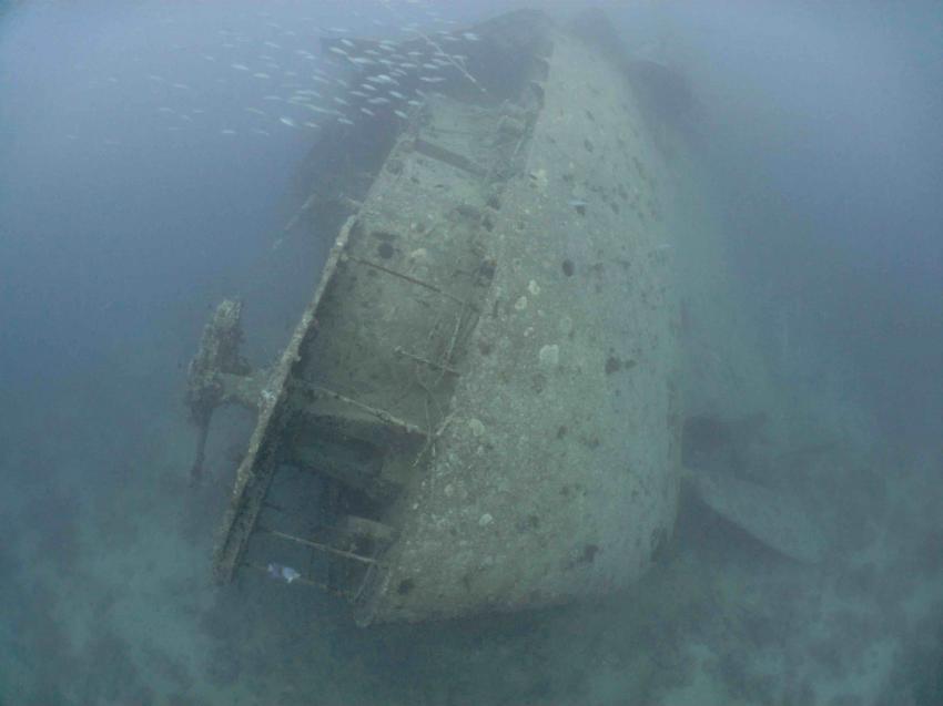 THISTLEGORM, Red Sea Waterworld, Sharm el Sheikh, Ägypten, Sinai-Süd bis Nabq