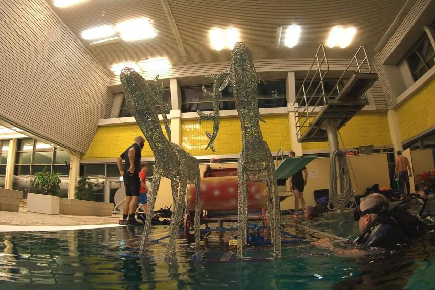 Dive´n Dive Center, Berlin, Deutschland, Berlin