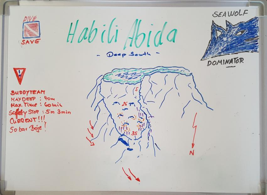 Habili Abida, Seawolf Diving Safari Sudan Süden, Habili Abida / Abid, Südsudan, Sudan