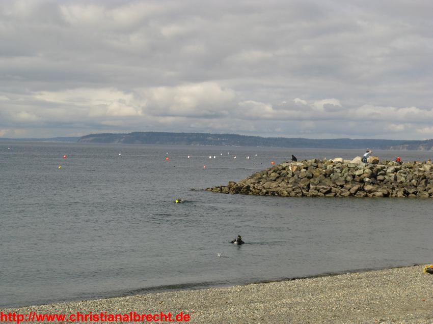 Edmonds Underwater Park (Seattle), Edmonds Underwater Park,Edmonds (Seattle),Washington,USA