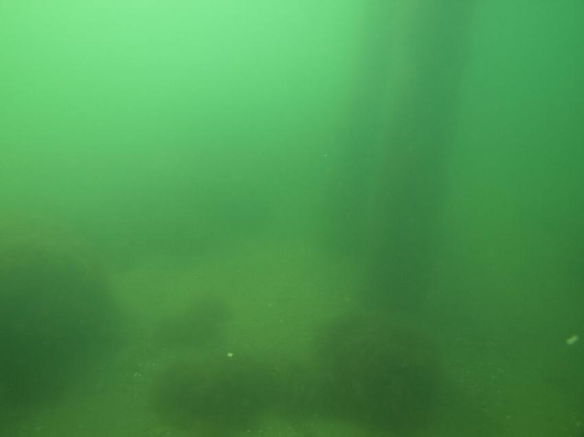 Ostsee/Fehmarn/Katharinenhof, Fehmarn Sund,Schleswig-Holstein,Deutschland,Schleswig Holstein