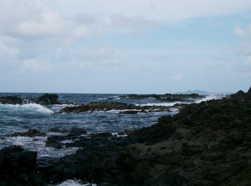 La Baignoire & Anse Noire (Schnorcheln), La Baignoire & Anse Noire,Martinique