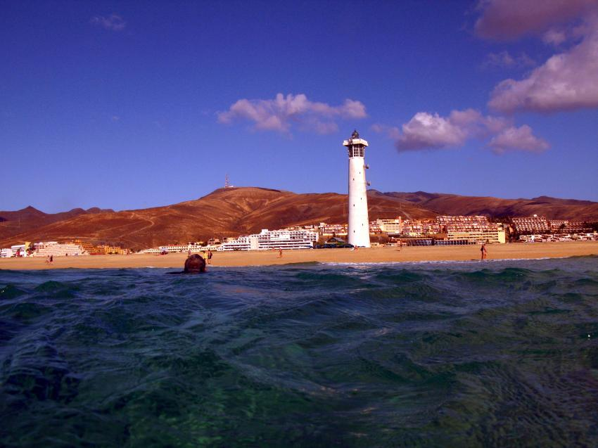 Fuerteventura Jandia Großes Muränenriff