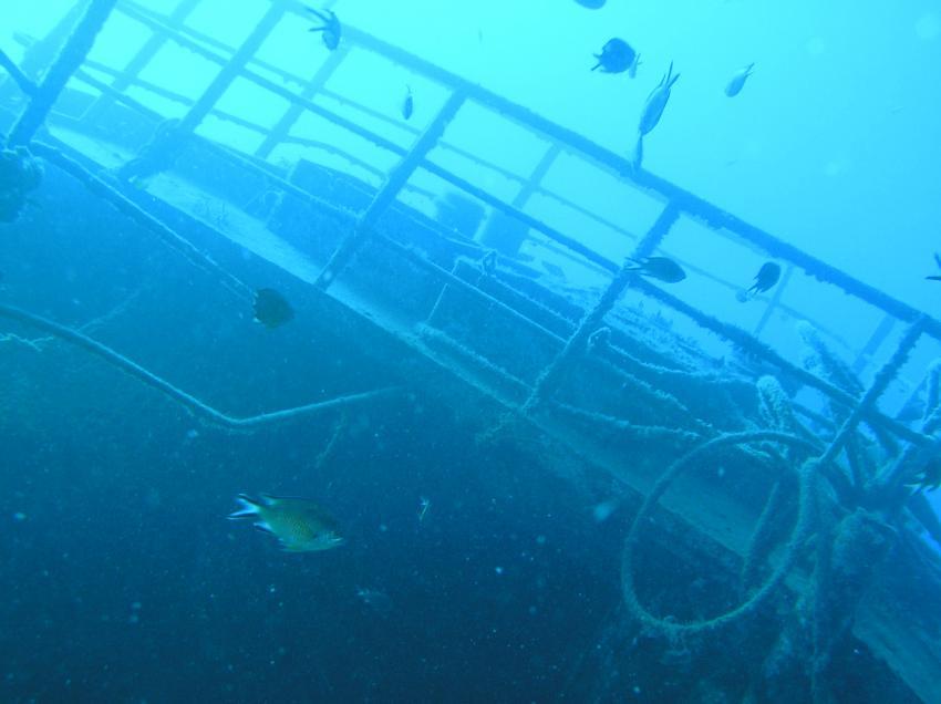 Gran Canaria - Mogan Wreck-Dive, Gran Canaria,Mogan Wreck-Dive,Spanien