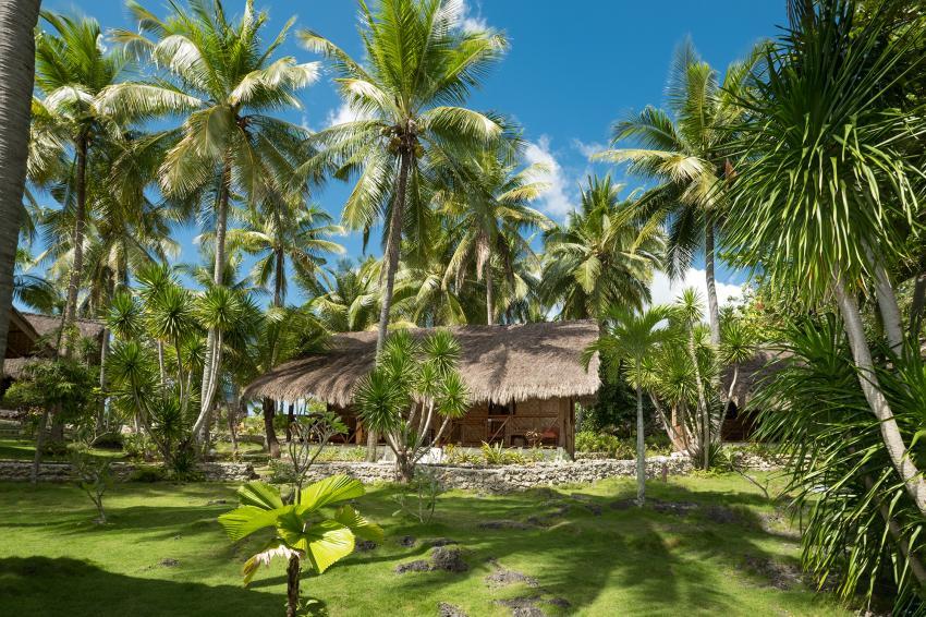 Sampaguita - ein Stückchen Natur, Natur Tauchen Entspannen Garten, Sampaguita Resort Hotel, Tongo Point, Maolboal, Cebu Island, Philippinen
