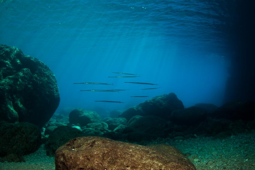 Flachwasserbereich Fledermaushöhle, Blauwasser, Sonnenlicht, Barakuda, Adrasan/Fledermaushöhle, Türkei