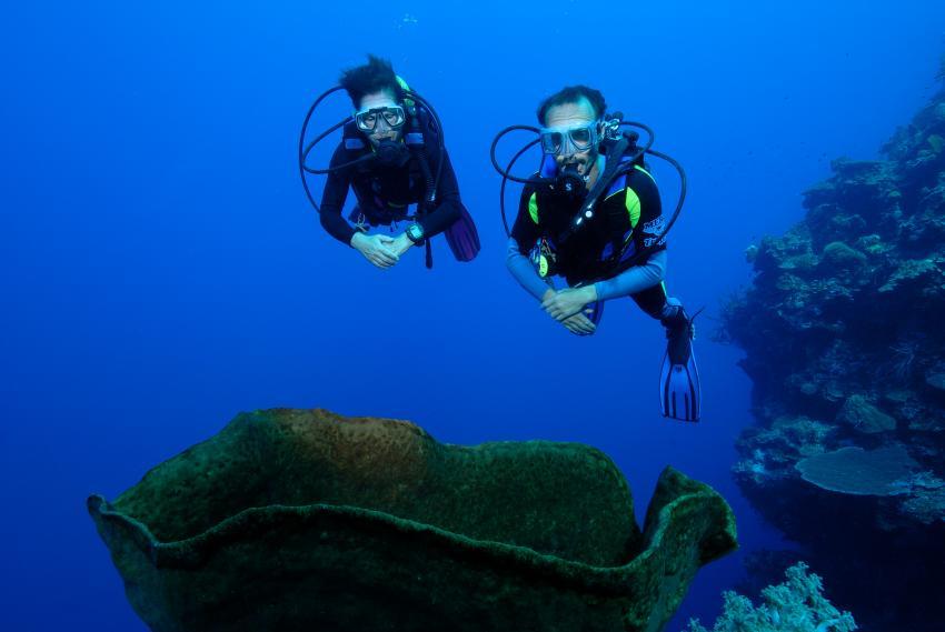 panorama reef, Panorama Reef (Safaga),Ägypten,Deep Blue,Buddys