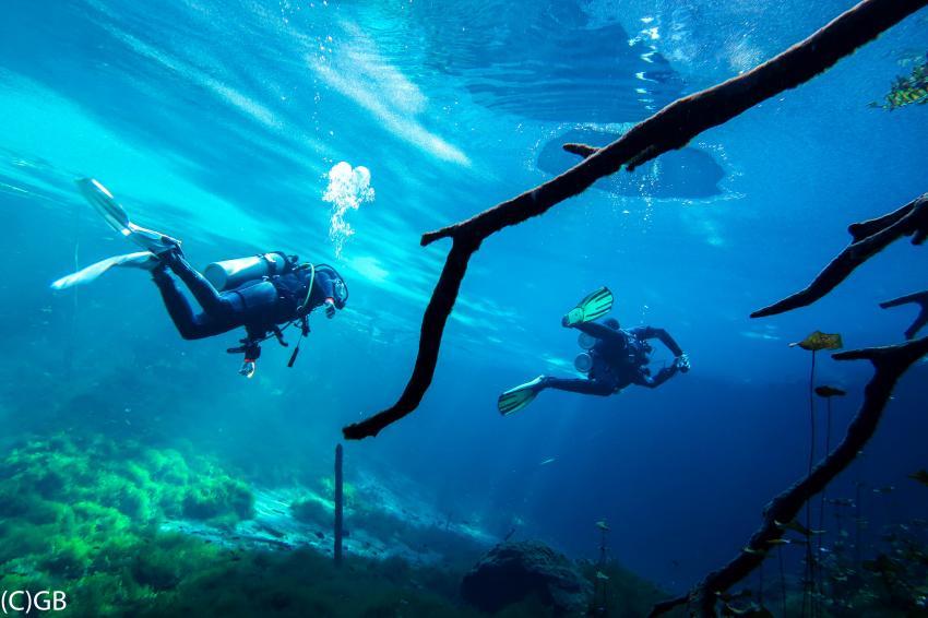 Aktun Ha, Cenote Adventures, Mexiko