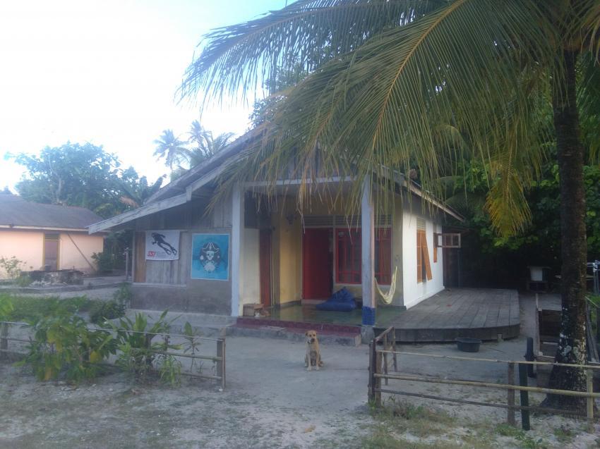 Tauchbasis , Tauchbasis Theo, Kei Pirate Divers, Indonesien, Allgemein