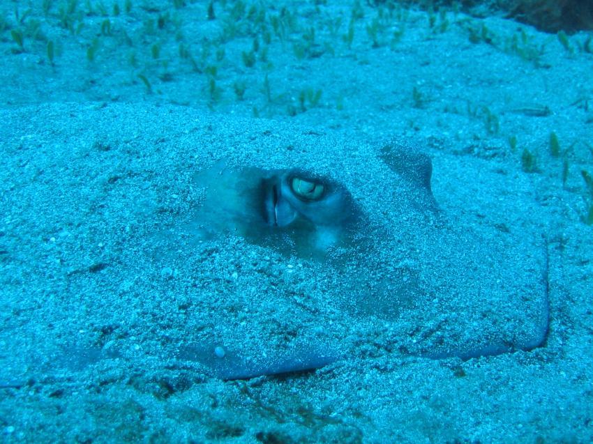 St. Eustatius, St. Eustatius,Niederländische Antillen
