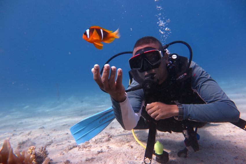 SWD2, Scuba World Divers Makadi Bay, Ägypten, Hurghada