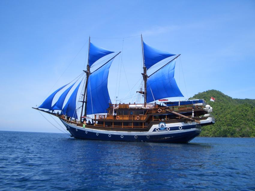 Shoene Piratenschiff!, Indonesia;liveaboard;komodo;safari, Cheng Ho, Indonesien, Allgemein