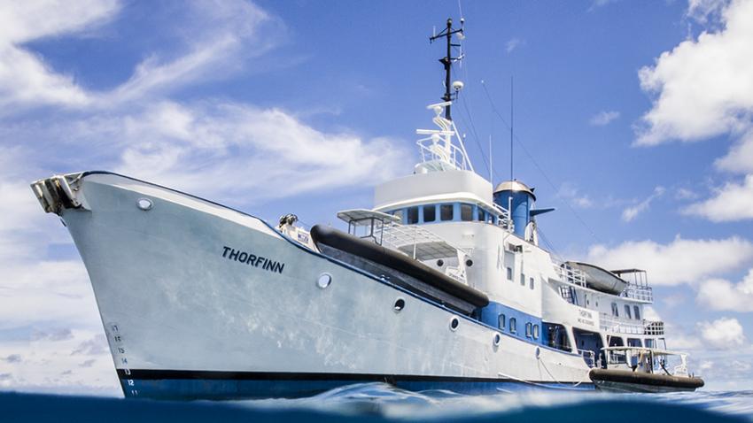 Thorfinn, Truk, Mikronesien