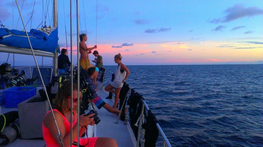 relax, Rum Runner, Cairns, Australien
