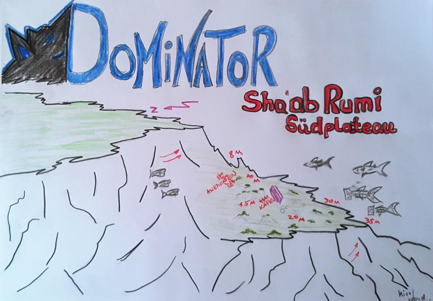Sha'ab Rumi, Sudan Rumi Südplateau Seawolf Diving Safari Tauchen Port Sudan Precontinent II Jack Cousteau, Sha'ab Rumi Südplateau, Sudan