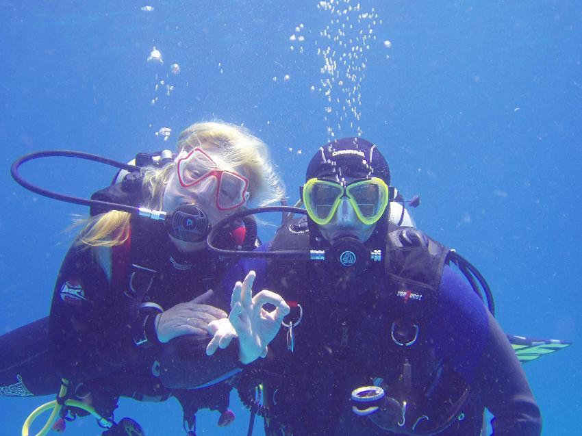 Seawolf - Divers, Hurghada