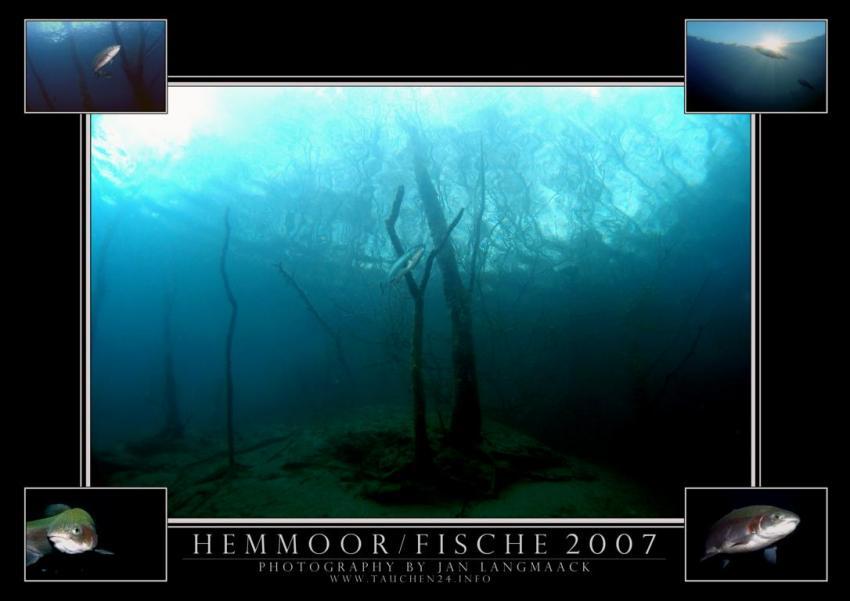 Hemmoor