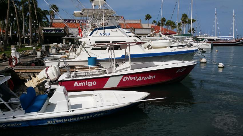 Dive Aruba, Niederländische Antillen, Aruba