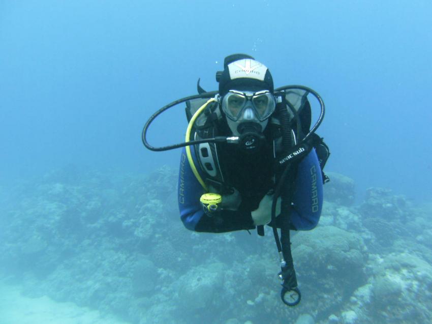 Mauritius, Dive DreamDiving Center,Trou aux Biches,Mauritius,Taucher,entspannter Tauchgang