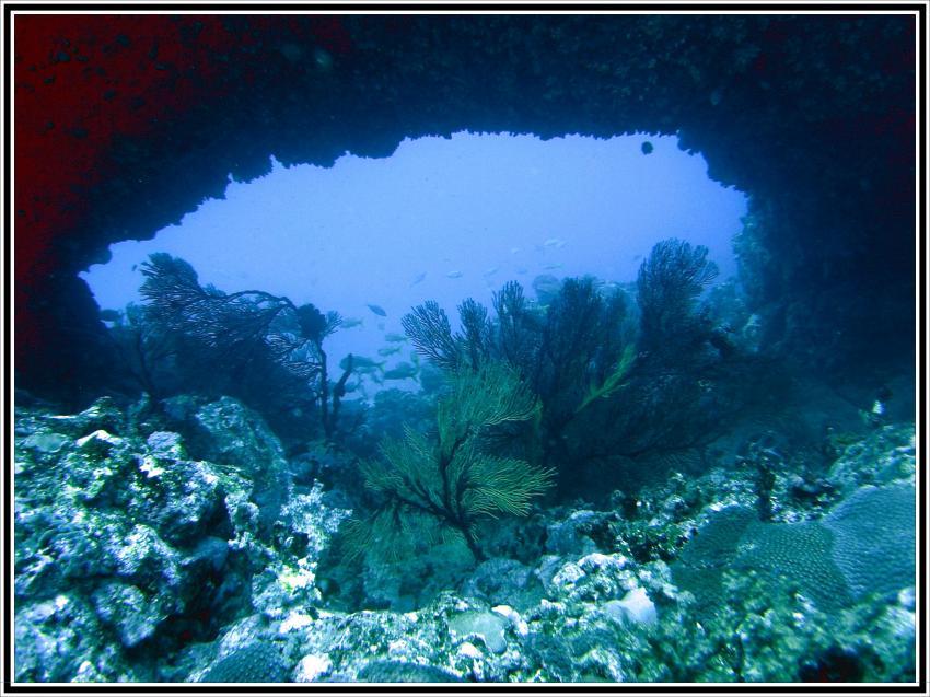 Rolas, Rolas,Sao Tome,Sao Tome und Principe,Höhle,Blick nach draußen
