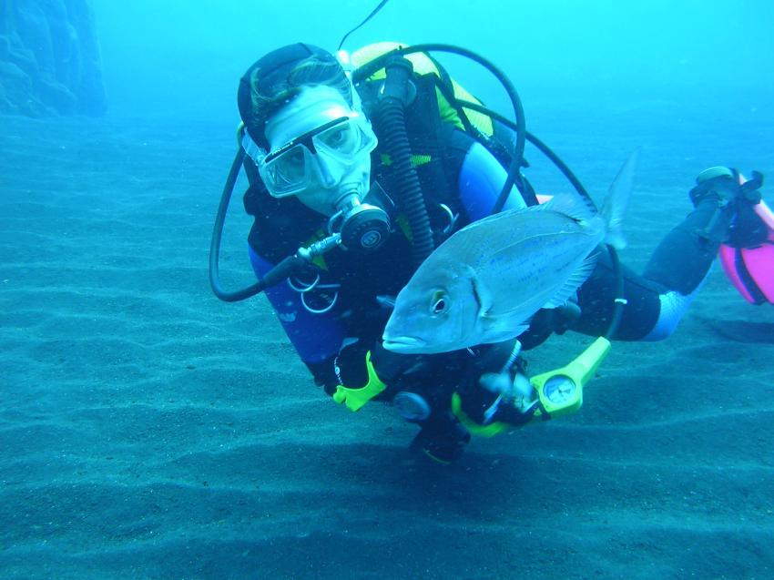 La Palma - Diving Center