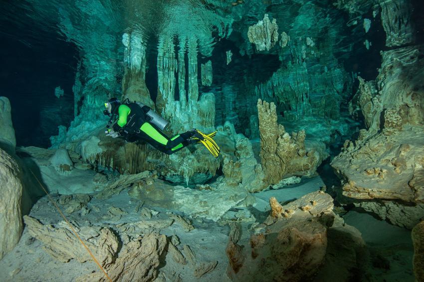 Elke im glasklaren Cenotenwasser, höhlentauchen, Cenoten, Höhlen, Cenote Adventures, Mexiko