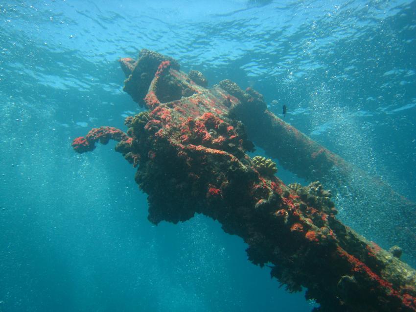 Kuredu - Lhaviyani Atoll, Kuredu,Malediven,Shipyard,Wrack,Mast