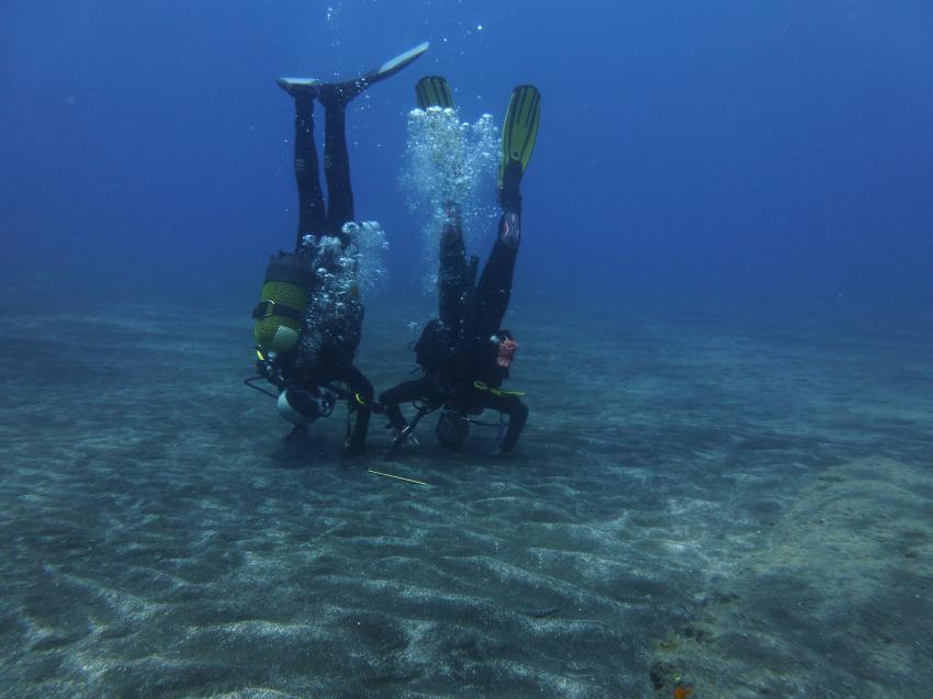 Sport unter den Felsen von Los Gigantes, Diveria Diving Center, Alcala Teneriffa, Spanien, Kanarische Inseln