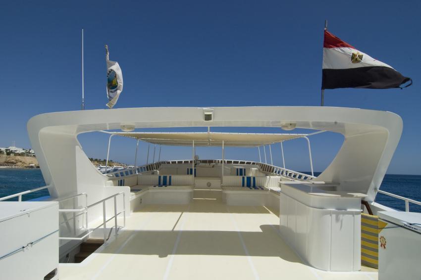 Freedom III, Ägypten