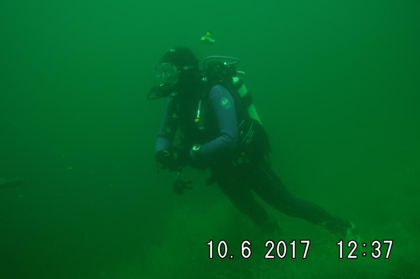 Joy-Venture-Diving, Gimbsheim Rheinhessen, Deutschland, Rheinland Pfalz