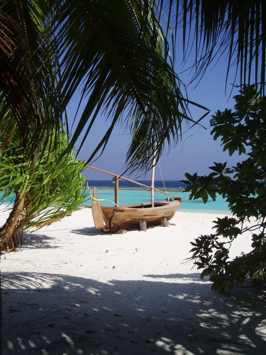 Vakarufalhi / Süd-Ari-Atoll, Vakarufalhi / Süd-Ari-Atoll,Malediven,Insel,Strand,weißer Sand,Palmen
