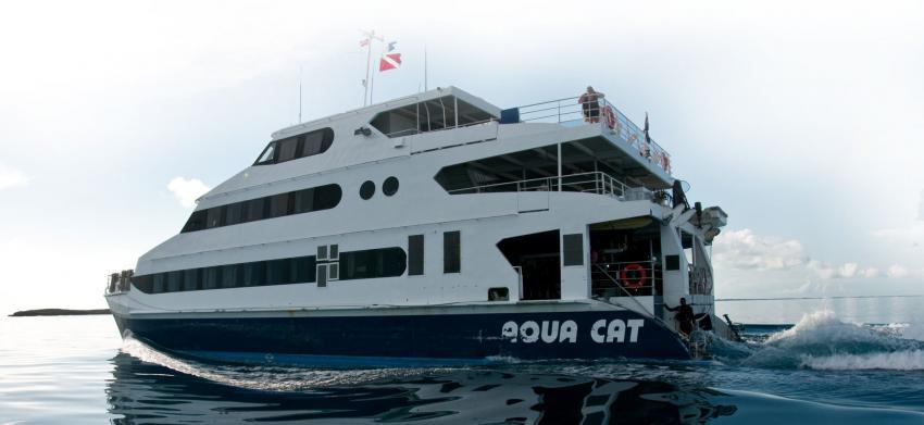 Aqua Cat, Bahamas, Raja Laut, Malaysia