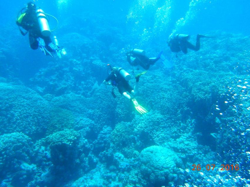 Abu Dabab, Orca Dive Club Moreen Beach, Ägypten, Marsa Alam und südlich